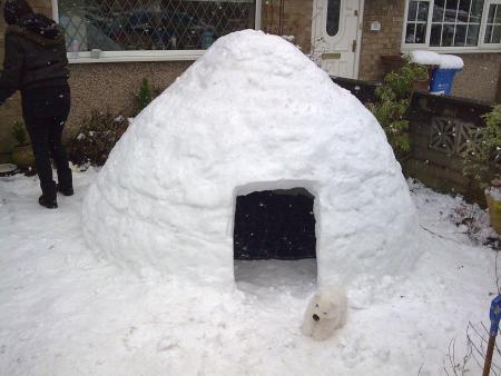 Alfresco fridge: one of several igloos