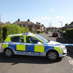 Wiltshire Police said two dogs were at the house but only one was involved in the attack