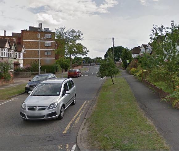 The dogs were attacked in Elmbridge Avenue. Picture: Google